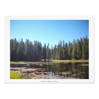 """Lakeside"" Yosemite Art Photo"