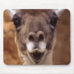 lama mousemats