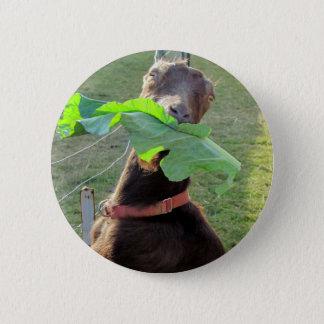 Lamancha Goat 6 Cm Round Badge