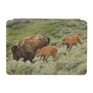 Lamar Valley Mini Stampede iPad Mini Cover