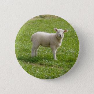 Lamb 6 Cm Round Badge