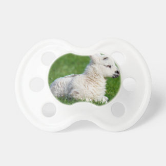 Lamb - A Newborn Baby Pacifiers