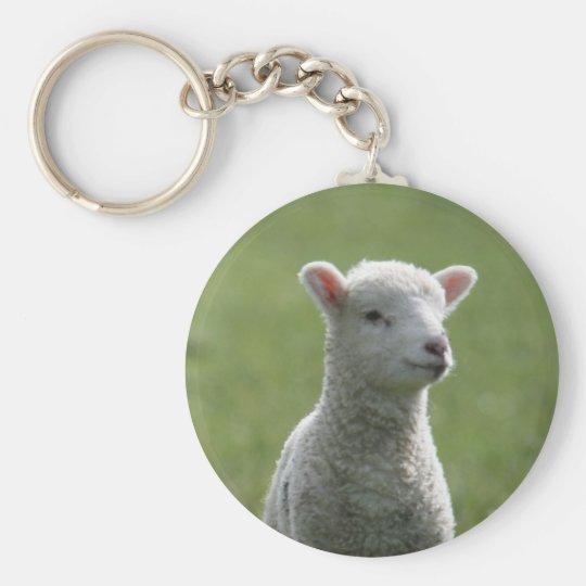 Lamb Basic Round Button Key Ring