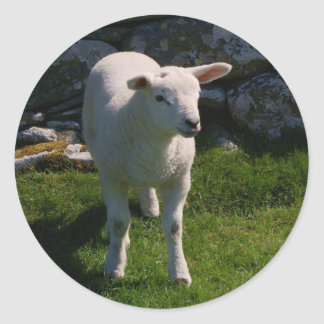 Lamb Classic Round Sticker