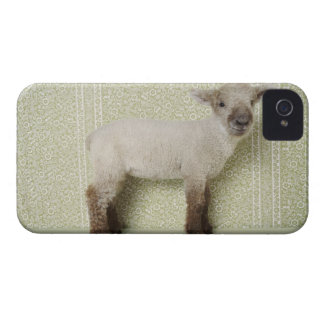 Lamb Standing Indoors, and Floral Wallpaper iPhone 4 Cases