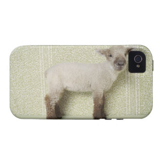 Lamb Standing Indoors, and Floral Wallpaper Case-Mate iPhone 4 Cases