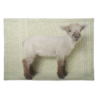 Lamb Standing Indoors, and Floral Wallpaper Placemat