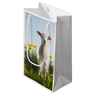 Lamb walking in field of flowers small gift bag