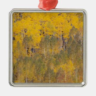 Lambert Hollow, aspen trees 2 Christmas Ornament