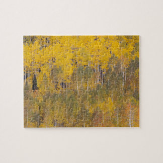 Lambert Hollow, aspen trees 2 Jigsaw Puzzle