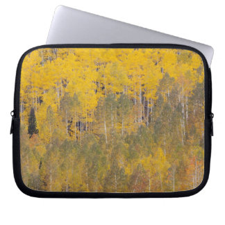 Lambert Hollow, aspen trees 2 Laptop Sleeve