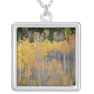 Lambert Hollow, aspen trees 4 Silver Plated Necklace