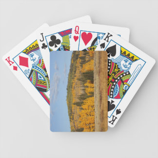 Lambert Hollow, aspen trees Bicycle Playing Cards