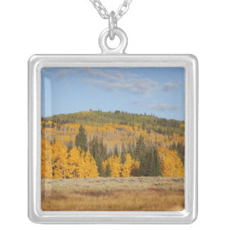 Lambert Hollow, aspen trees Silver Plated Necklace