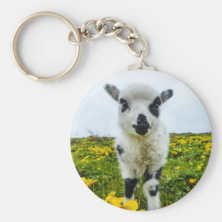 Lambie Keyring Basic Round Button Key Ring