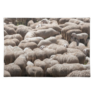 lambs and sheep in the flock in the mountains placemat