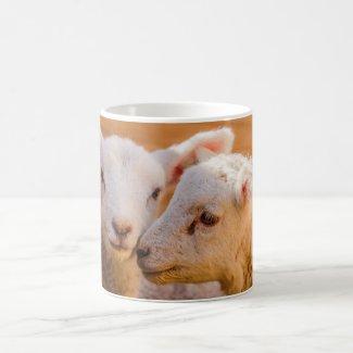 Lambs Coffee Mug