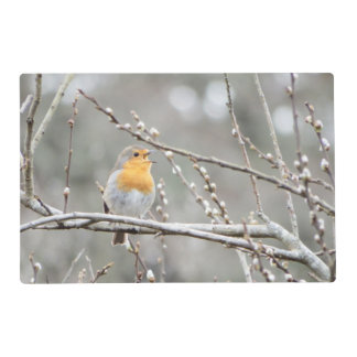 Laminated Robin Placemat by Deb Vincent Laminated Placemat
