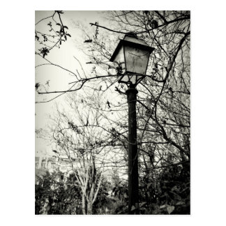 Lamp post in Paris Postcard