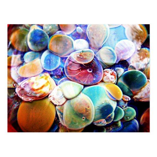 Lampwork Boro Glass Underwater Aquatic Postcard
