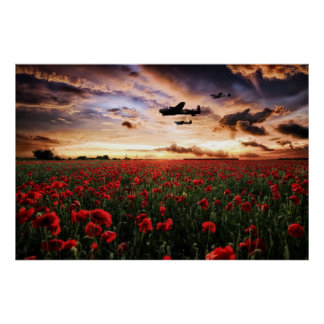 Lancaster Spitfire Hurricane Poppies Poster