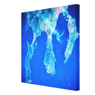 Land and Sea from Space Canvas Print