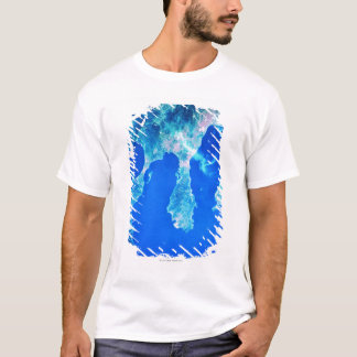 Land and Sea from Space T-Shirt