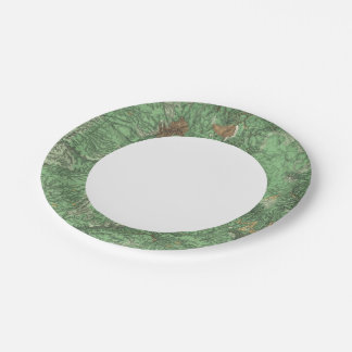 Land Classification Map of California Paper Plate