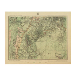 Land Classification Map of Central New Mexico Wood Wall Art