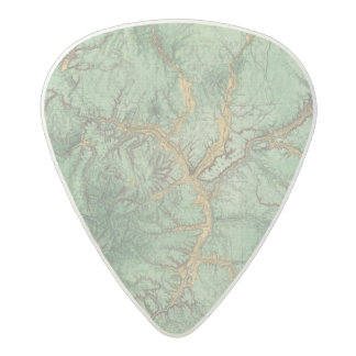 Land Classification Map of New Mexico 2 Acetal Guitar Pick