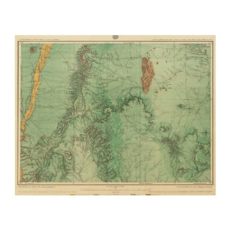 Land Classification Map of New Mexico 2 Wood Print