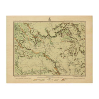 Land Classification Map of New Mexico Wood Wall Art