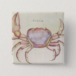 Land Crab 15 Cm Square Badge