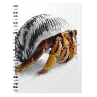 land hermit crab notebooks