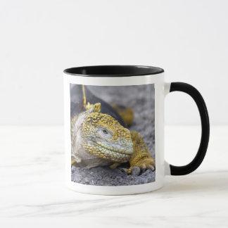 Land Iguana Mug