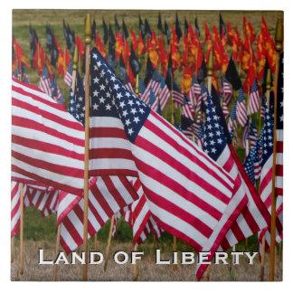 Land of Liberty Flag Tile C