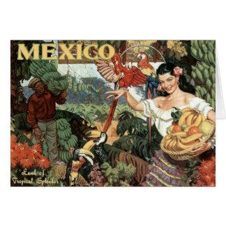 Land of Tropical Splendor Card