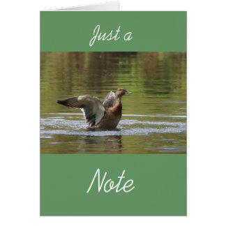 Landing Mallard Card