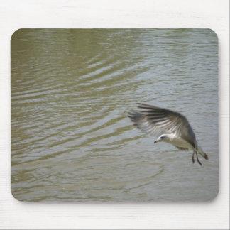 Landing Mouse Pad