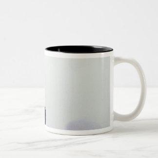 Landing of a Space Shuttle Two-Tone Coffee Mug