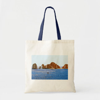 Land's End Budget Tote Bags