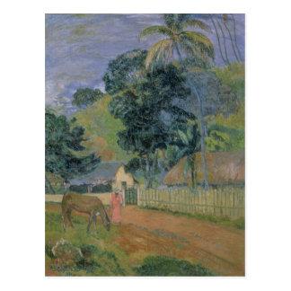 Landscape, 1899 postcard