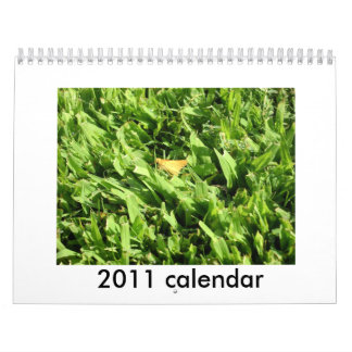 landscape, 2011 calendar