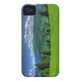 Landscape Blackberry case