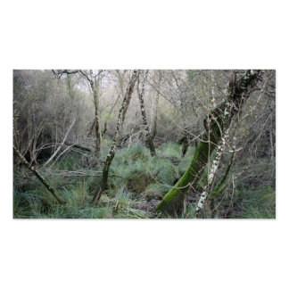 Landscape cork oaks and nature in Doñana, Spain Pack Of Standard Business Cards