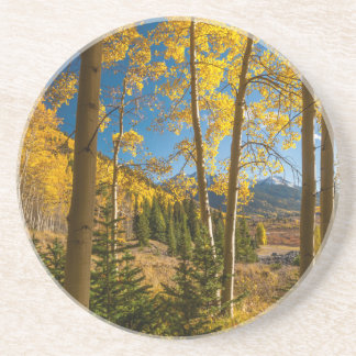 Landscape in San Juan Mountains Coaster