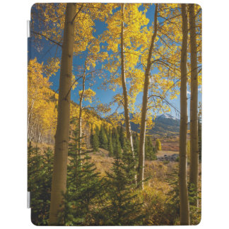 Landscape in San Juan Mountains iPad Cover
