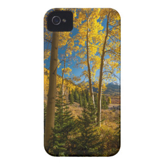 Landscape in San Juan Mountains iPhone 4 Covers