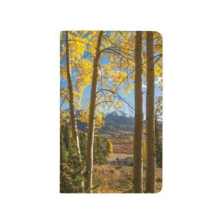 Landscape in San Juan Mountains Journal