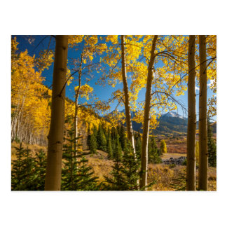 Landscape in San Juan Mountains Postcard